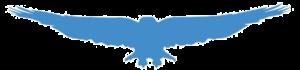 Skyy EAGLE Blue-1 (TNSPNT)